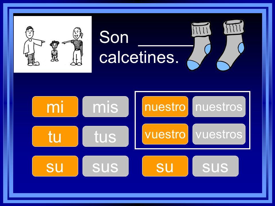 Son ______ calcetines. tu su nuestro su vuestro mimis tus sus nuestros sus vuestros
