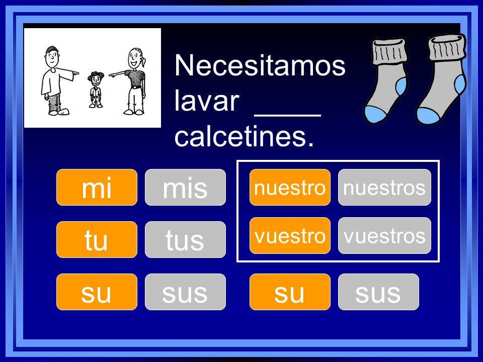 Necesitamos lavar ____ calcetines. tu su nuestro su vuestro mimis tus sus nuestros sus vuestros