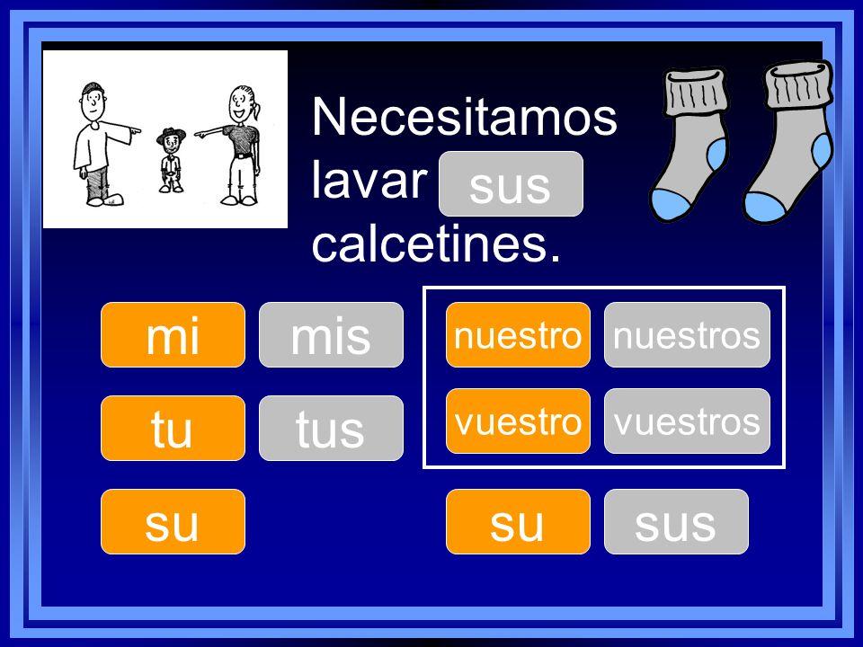 Necesitamos lavar ____ calcetines. tu su nuestro su vuestro mimis tus nuestros sus vuestros sus