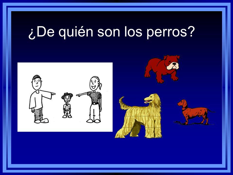 ¿De quién son los perros? Son sus perros.