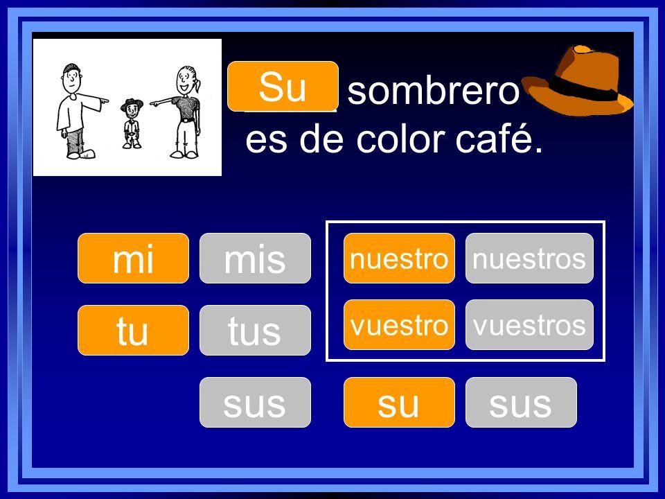 mi tu nuestro su vuestro ____ sombrero es de color café. Su mis tus sus nuestros sus vuestros