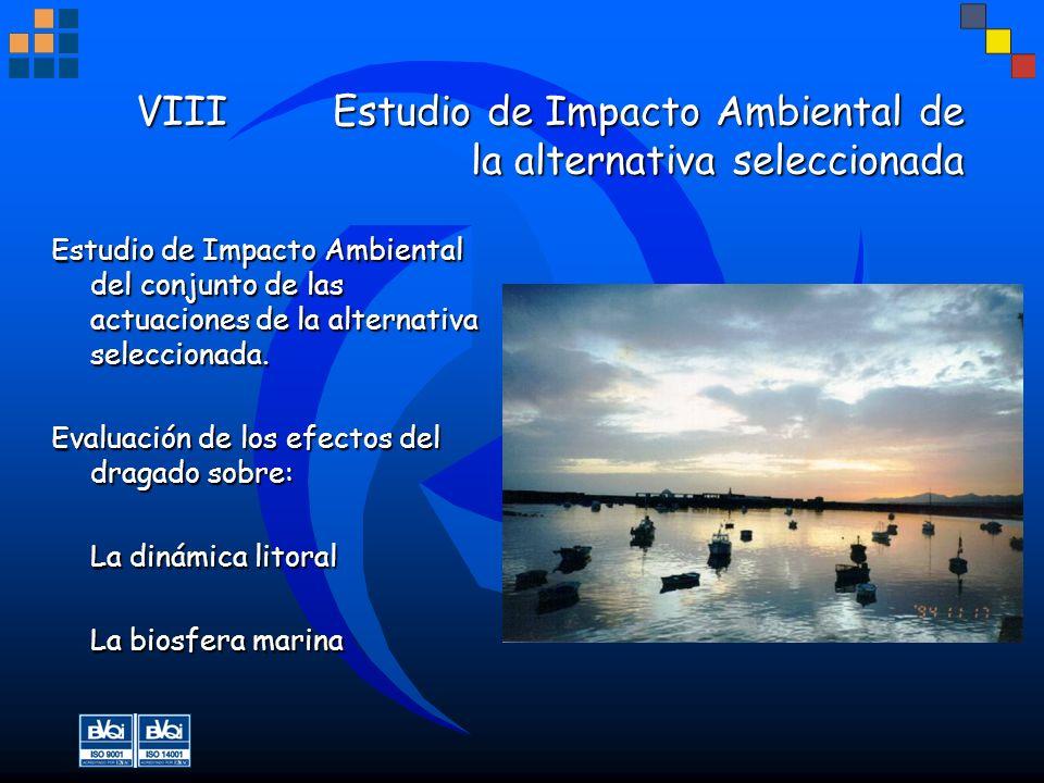 VIIIEstudio de Impacto Ambiental de la alternativa seleccionada VIIIEstudio de Impacto Ambiental de la alternativa seleccionada Estudio de Impacto Amb