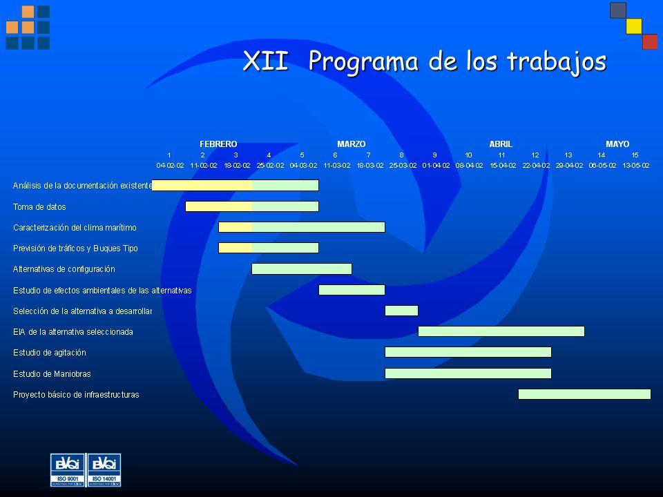 XIIPrograma de los trabajos
