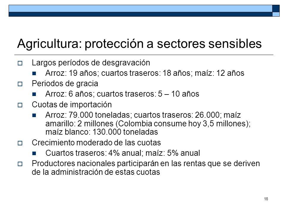 18 Agricultura: protección a sectores sensibles Largos períodos de desgravación Arroz: 19 años; cuartos traseros: 18 años; maíz: 12 años Periodos de g