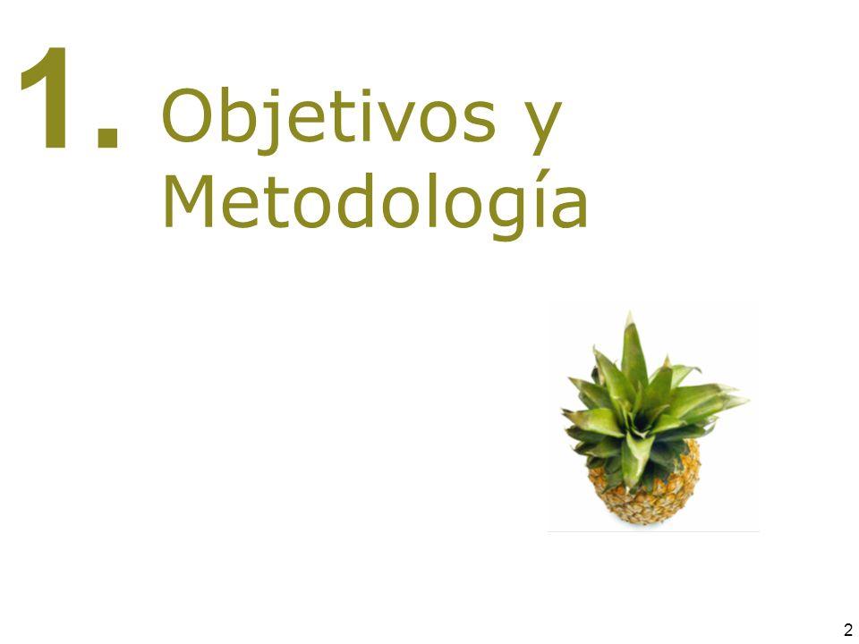 1. 2 Objetivos y Metodología