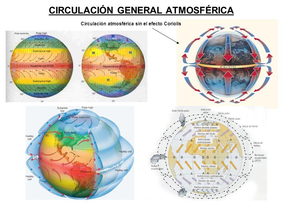 CIRCULACIÓN GENERAL ATMOSFÉRICA Circulación atmosférica sin el efecto Coriolis