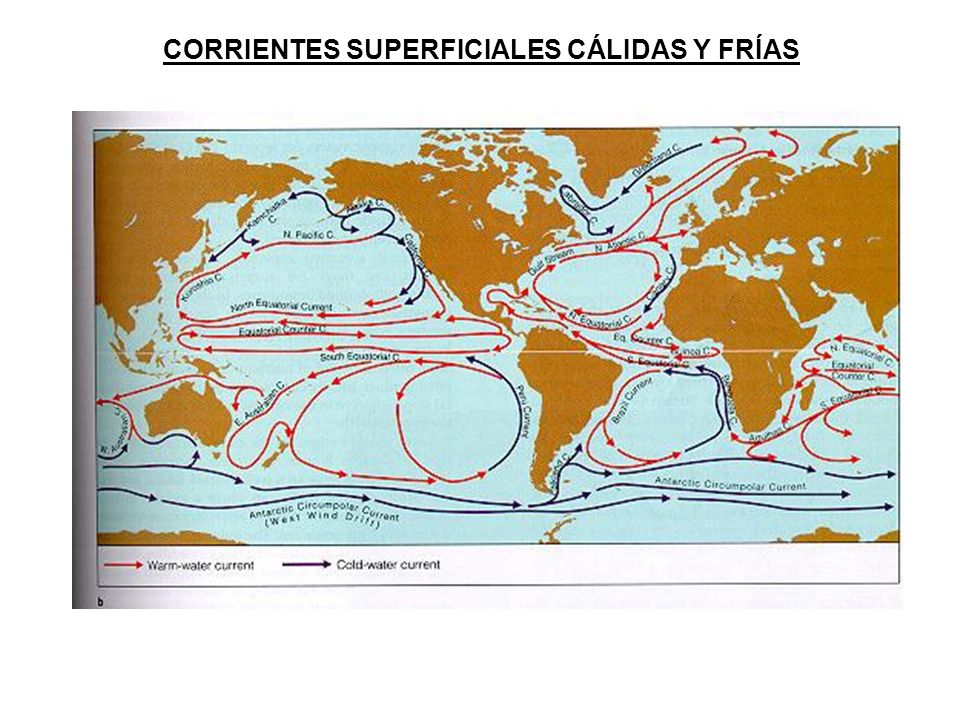 CORRIENTES SUPERFICIALES CÁLIDAS Y FRÍAS