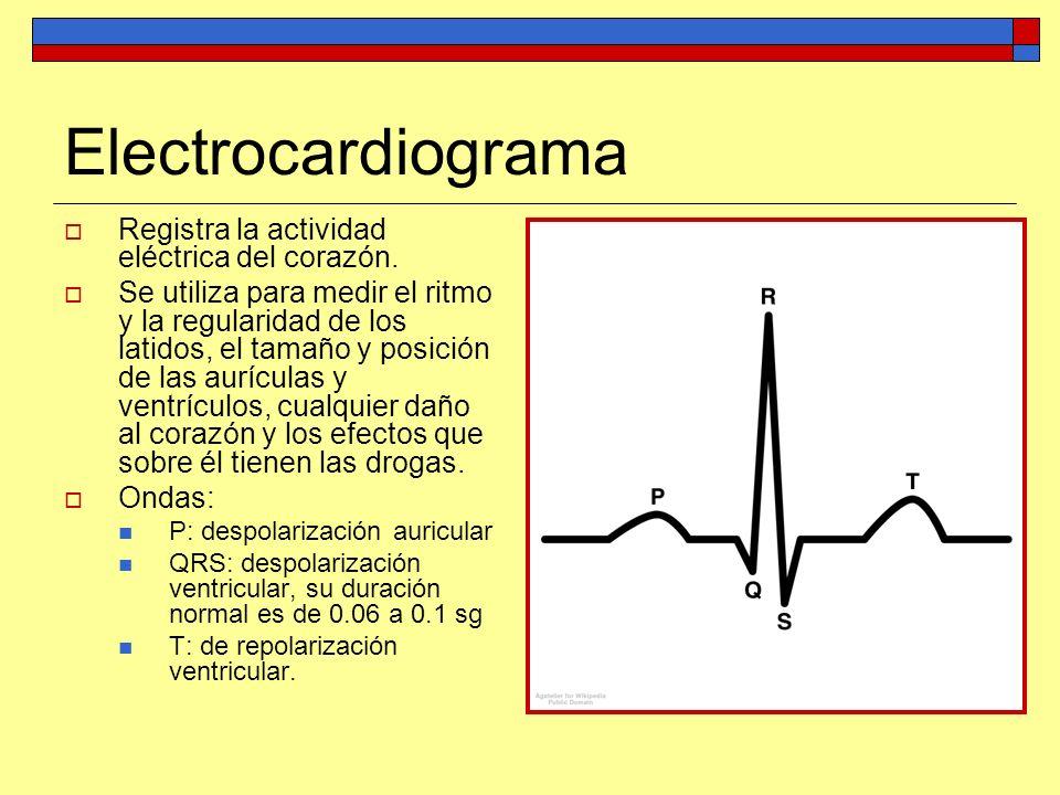Electrocardiograma Registra la actividad eléctrica del corazón. Se utiliza para medir el ritmo y la regularidad de los latidos, el tamaño y posición d