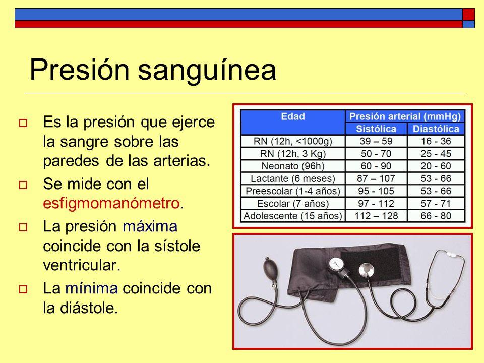 Presión sanguínea Es la presión que ejerce la sangre sobre las paredes de las arterias. Se mide con el esfigmomanómetro. La presión máxima coincide co
