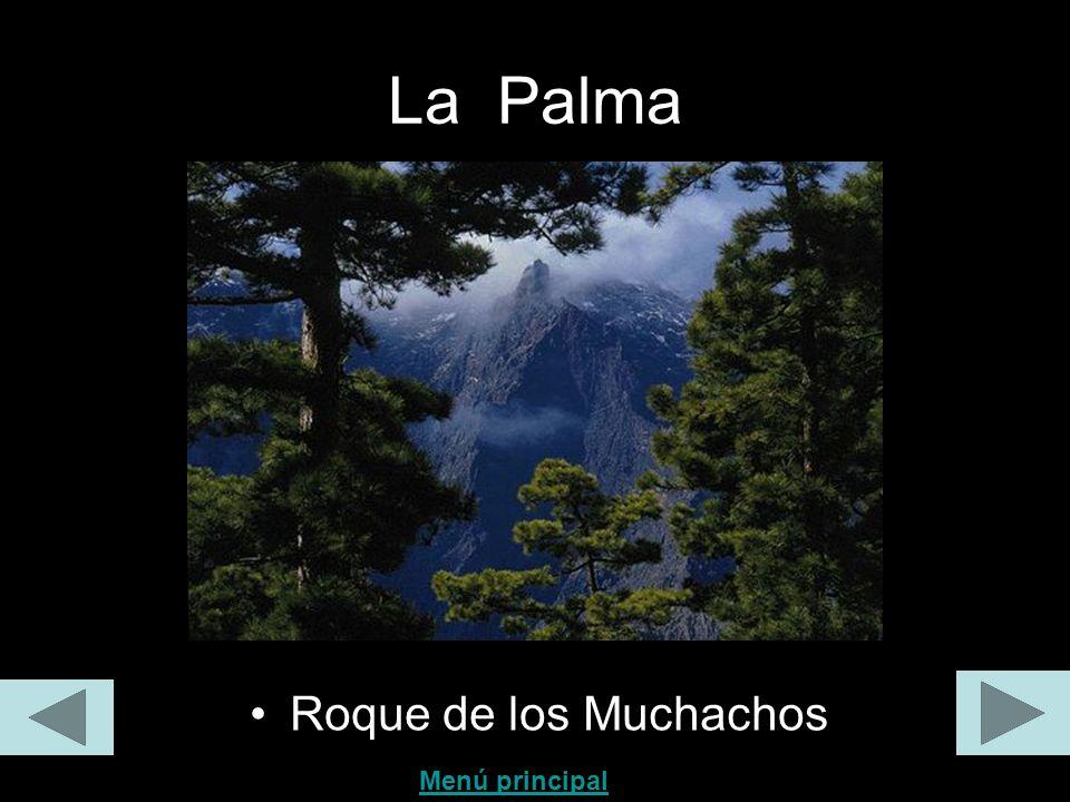 La Palma Roque de los Muchachos Menú principal