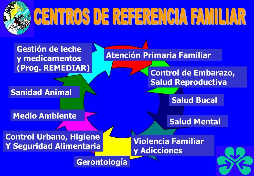 Equipos de Salud Estable referentes de las familias de cada Barrio Equipos Interdisciplinarios de Apoyo profesionales que interactúan en varios centros