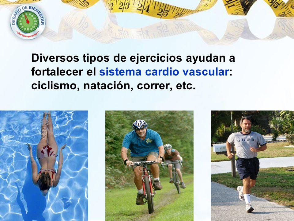 Diversos tipos de ejercicios ayudan a fortalecer el sistema cardio vascular: ciclismo, natación, correr, etc.