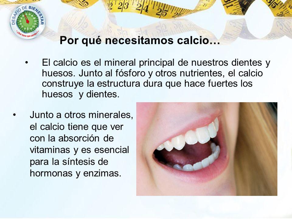 El calcio es el mineral principal de nuestros dientes y huesos. Junto al fósforo y otros nutrientes, el calcio construye la estructura dura que hace f