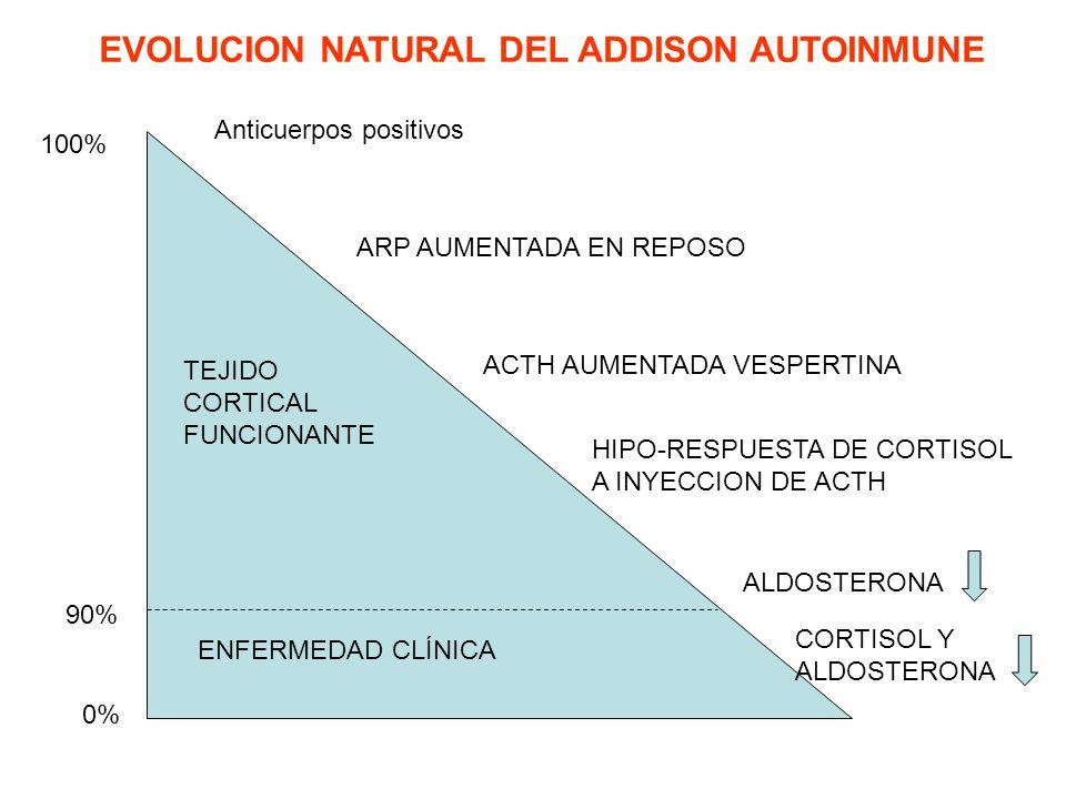 100% 90% 0% TEJIDO CORTICAL FUNCIONANTE ENFERMEDAD CLÍNICA Anticuerpos positivos ARP AUMENTADA EN REPOSO ACTH AUMENTADA VESPERTINA HIPO-RESPUESTA DE C