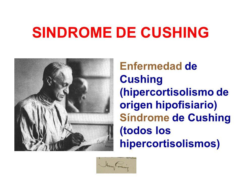 SINDROME DE CUSHING Enfermedad de Cushing (hipercortisolismo de origen hipofisiario) Síndrome de Cushing (todos los hipercortisolismos)
