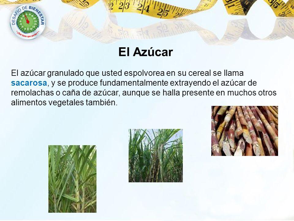 El Azúcar El azúcar granulado que usted espolvorea en su cereal se llama sacarosa, y se produce fundamentalmente extrayendo el azúcar de remolachas o