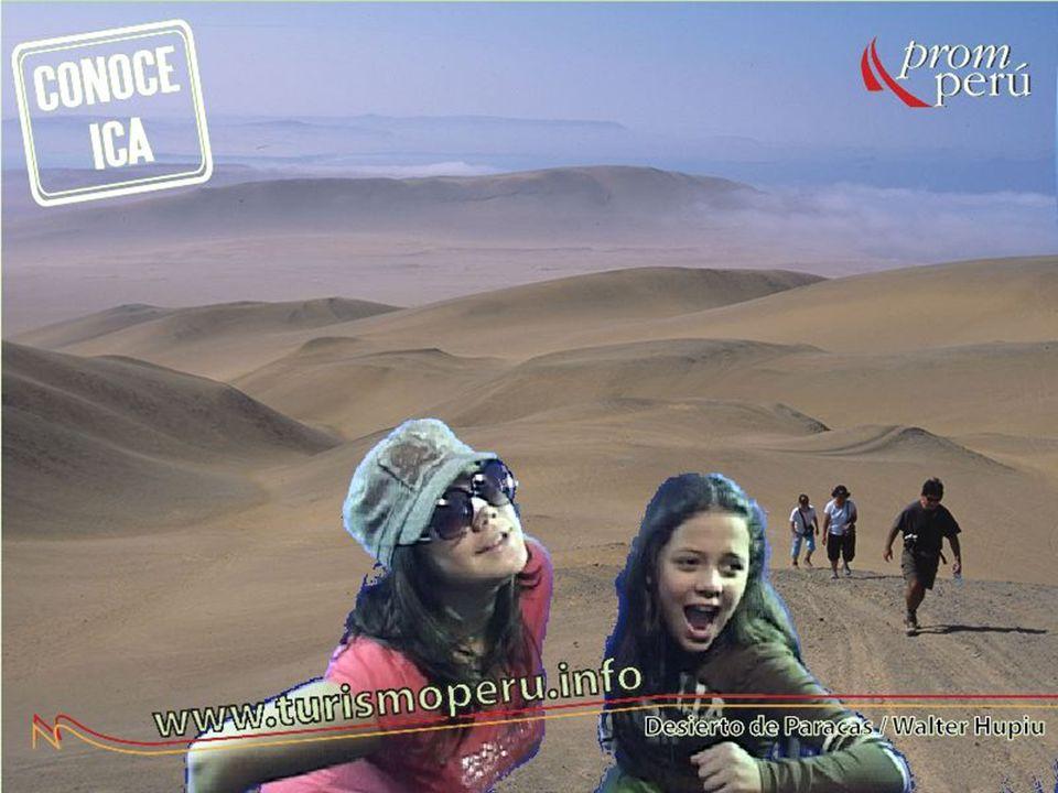 Subdirección de Promoción del Turismo Interno 16