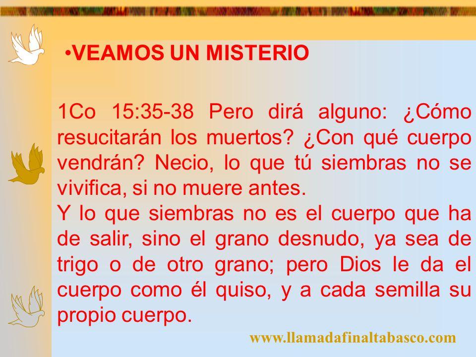 www.llamadafinaltabasco.com VEAMOS UN MISTERIO 1Co 15:35-38 Pero dirá alguno: ¿Cómo resucitarán los muertos? ¿Con qué cuerpo vendrán? Necio, lo que tú