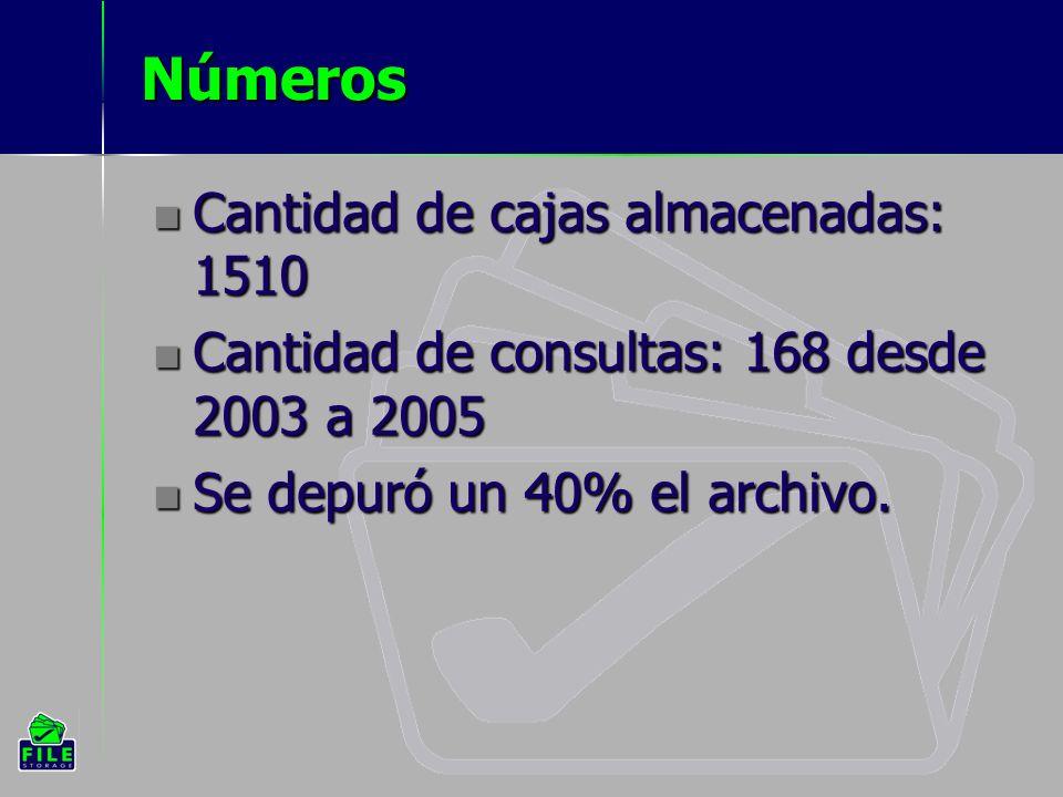 Números Cantidad de cajas almacenadas: 1510 Cantidad de consultas: 168 desde 2003 a 2005 Se depuró un 40% el archivo.