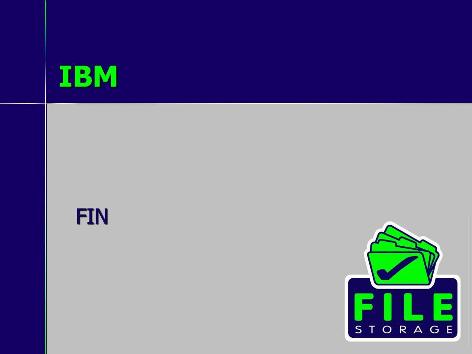 IBM FIN