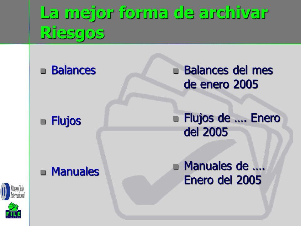 La mejor forma de archivar Riesgos Balances Balances Flujos Flujos Manuales Manuales Balances del mes de enero 2005 Balances del mes de enero 2005 Flu