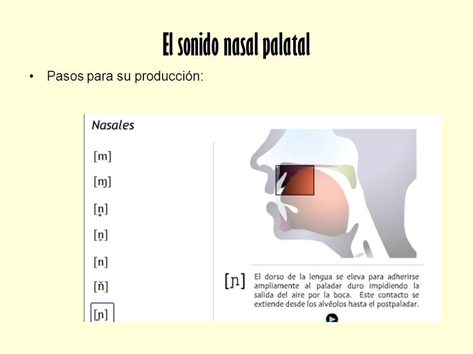 El sonido nasal palatal Pasos para su producción: