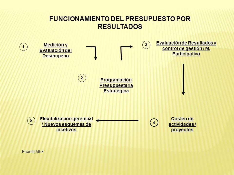 FUNCIONAMIENTO DEL PRESUPUESTO POR RESULTADOS Medición y Evaluación del Desempeño 1 3 4 2 Flexibilización gerencial / Nuevos esquemas de incetivos Pro