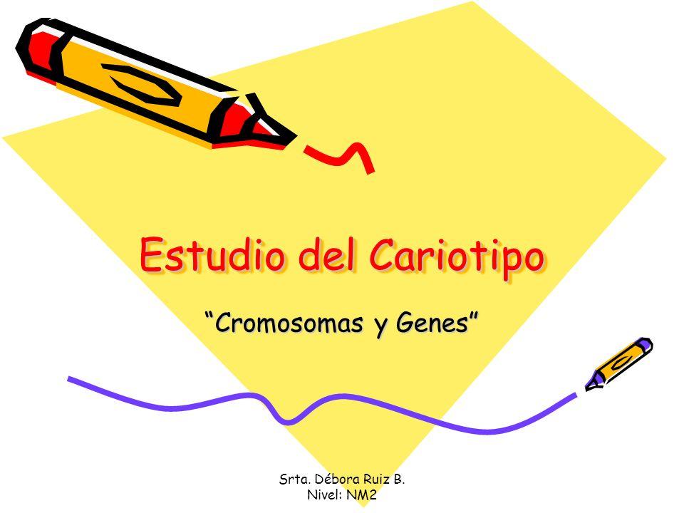 Srta. Débora Ruiz B. Nivel: NM2 Estudio del Cariotipo Cromosomas y Genes