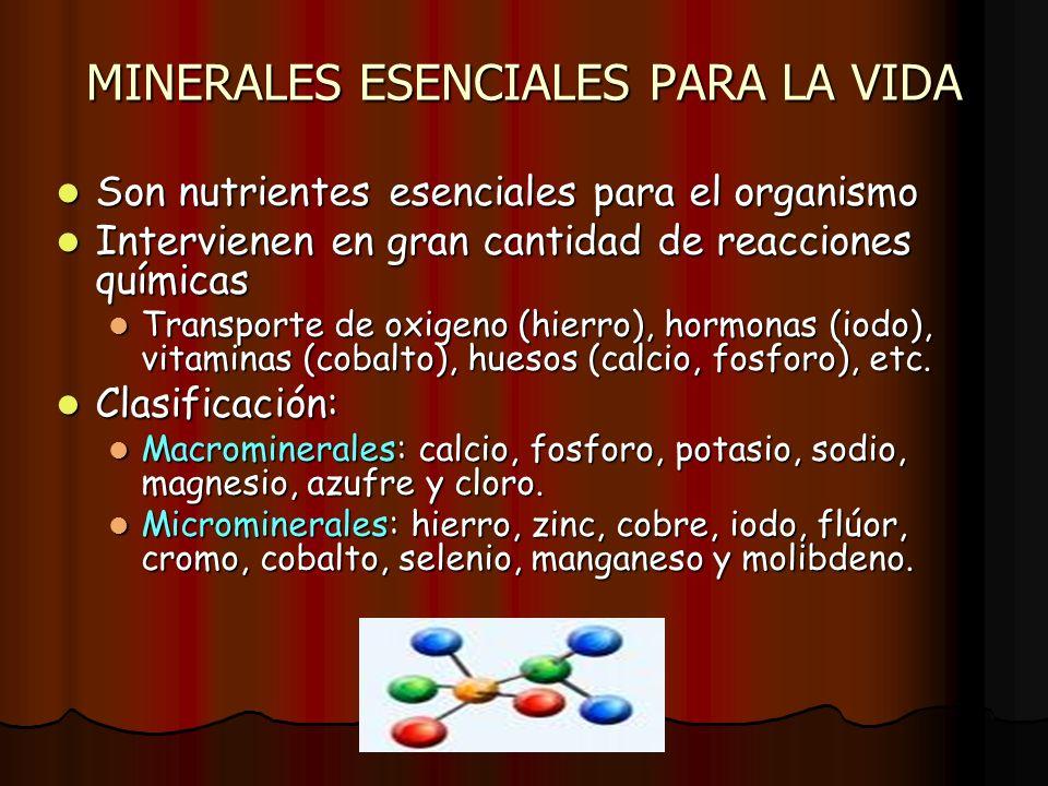 MINERALES ESENCIALES PARA LA VIDA Son nutrientes esenciales para el organismo Son nutrientes esenciales para el organismo Intervienen en gran cantidad