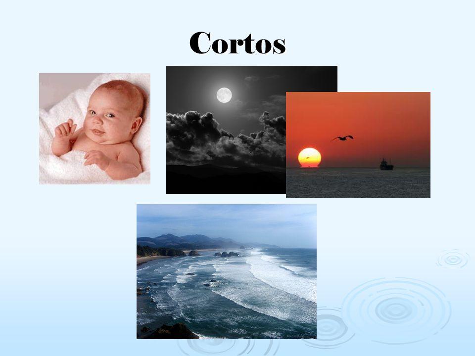 Cortos