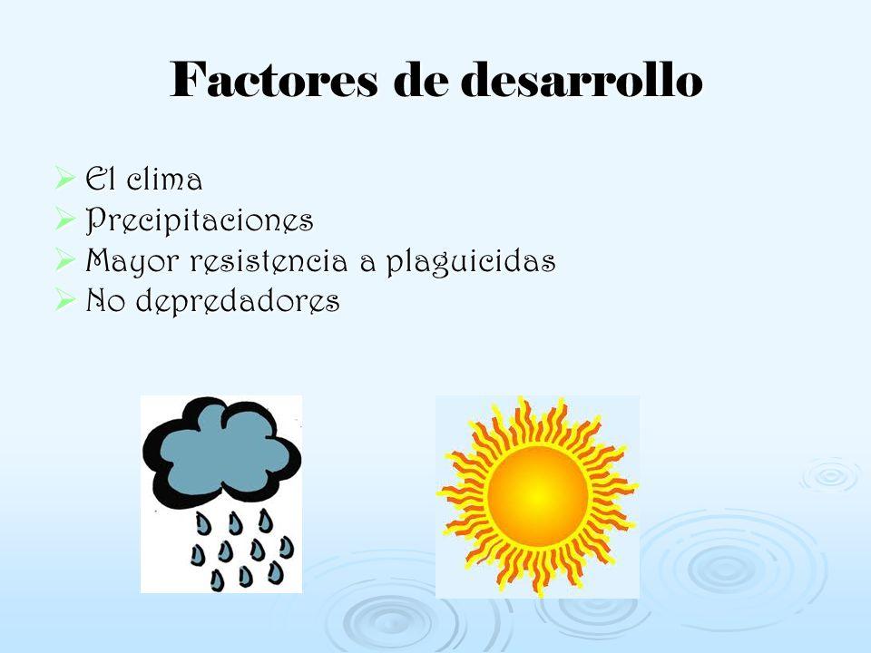 Factores de desarrollo El clima Precipitaciones Mayor resistencia a plaguicidas No depredadores