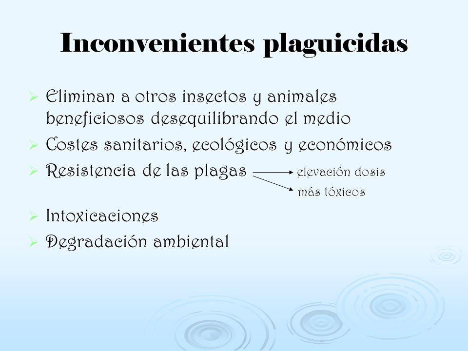 Inconvenientes plaguicidas Eliminan a otros insectos y animales beneficiosos desequilibrando el medio Costes sanitarios, ecológicos y económicos Resis