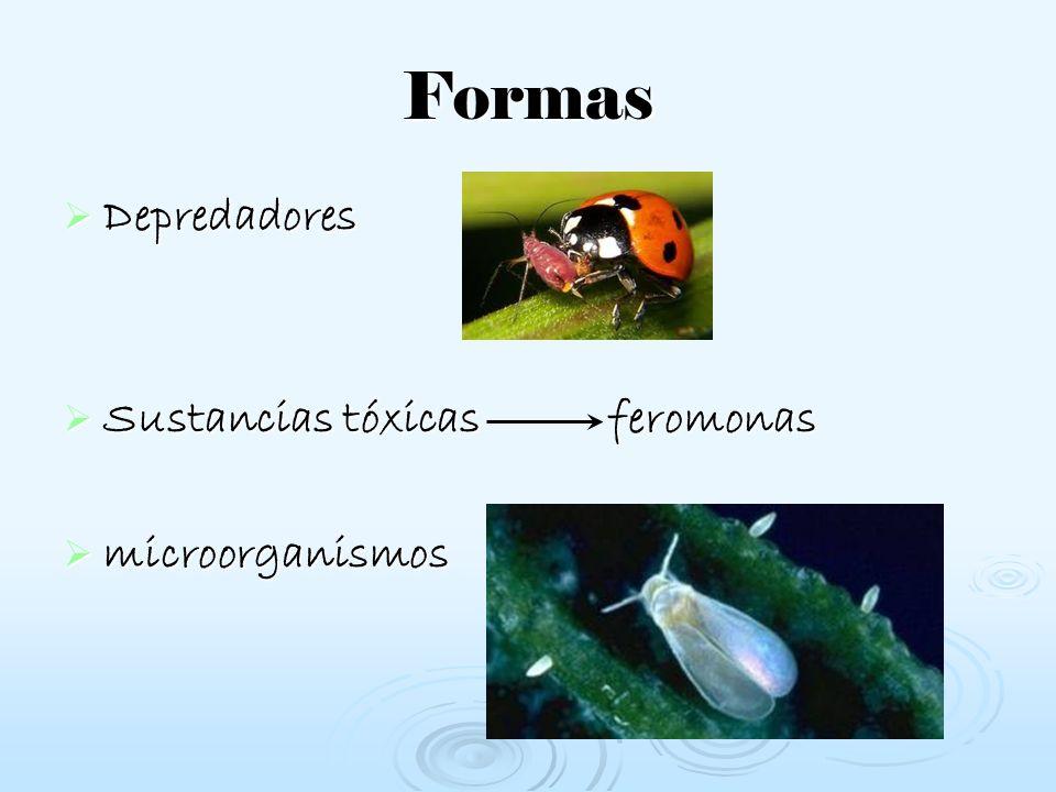 Formas Depredadores Sustancias tóxicas feromonas microorganismos