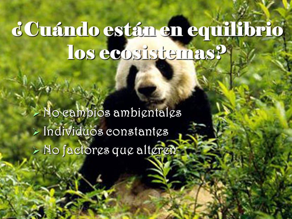¿Cuándo están en equilibrio los ecosistemas? No cambios ambientales No cambios ambientales Individuos constantes Individuos constantes No factores que