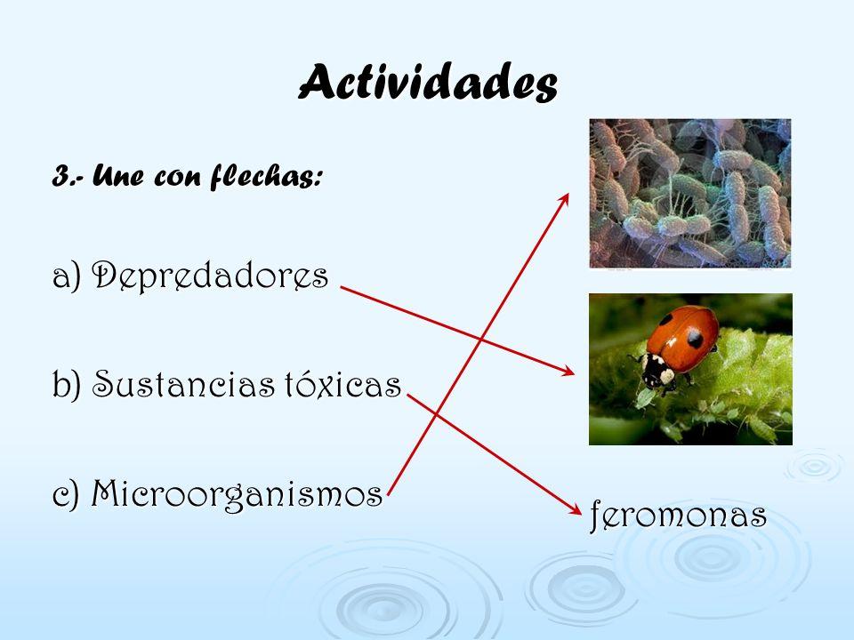 Actividades 3.- Une con flechas: a) Depredadores b) Sustancias tóxicas c) Microorganismos feromonas feromonas