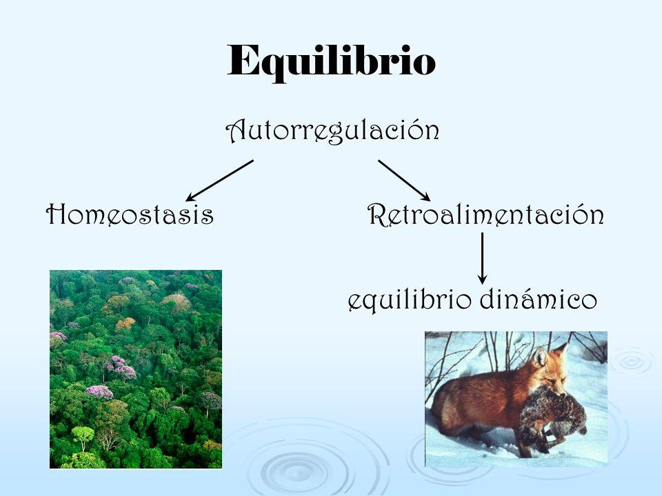 Desequilibrios en el ecosistema Plagas ¿Qué son.