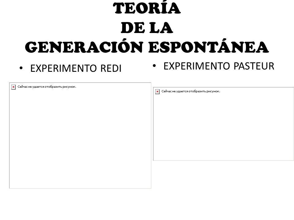 TEORÍA DE LA GENERACIÓN ESPONTÁNEA EXPERIMENTO PASTEUR EXPERIMENTO REDI