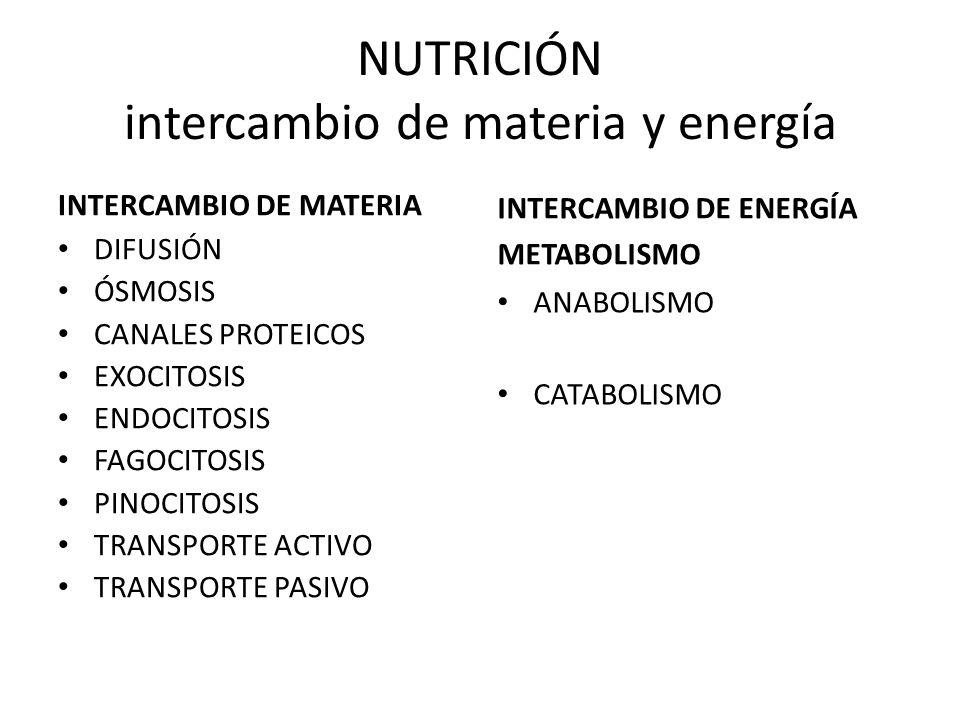 NUTRICIÓN intercambio de materia y energía INTERCAMBIO DE MATERIA DIFUSIÓN ÓSMOSIS CANALES PROTEICOS EXOCITOSIS ENDOCITOSIS FAGOCITOSIS PINOCITOSIS TR