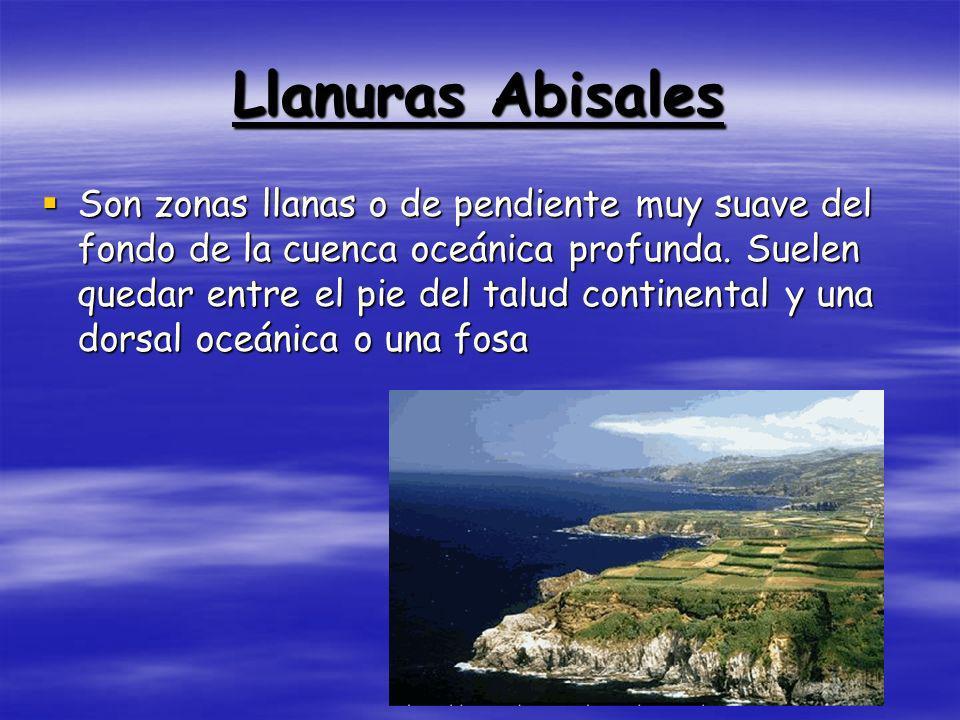 Taludes Continental Es una parte de la morfología submarina, ubicada entre los mar.