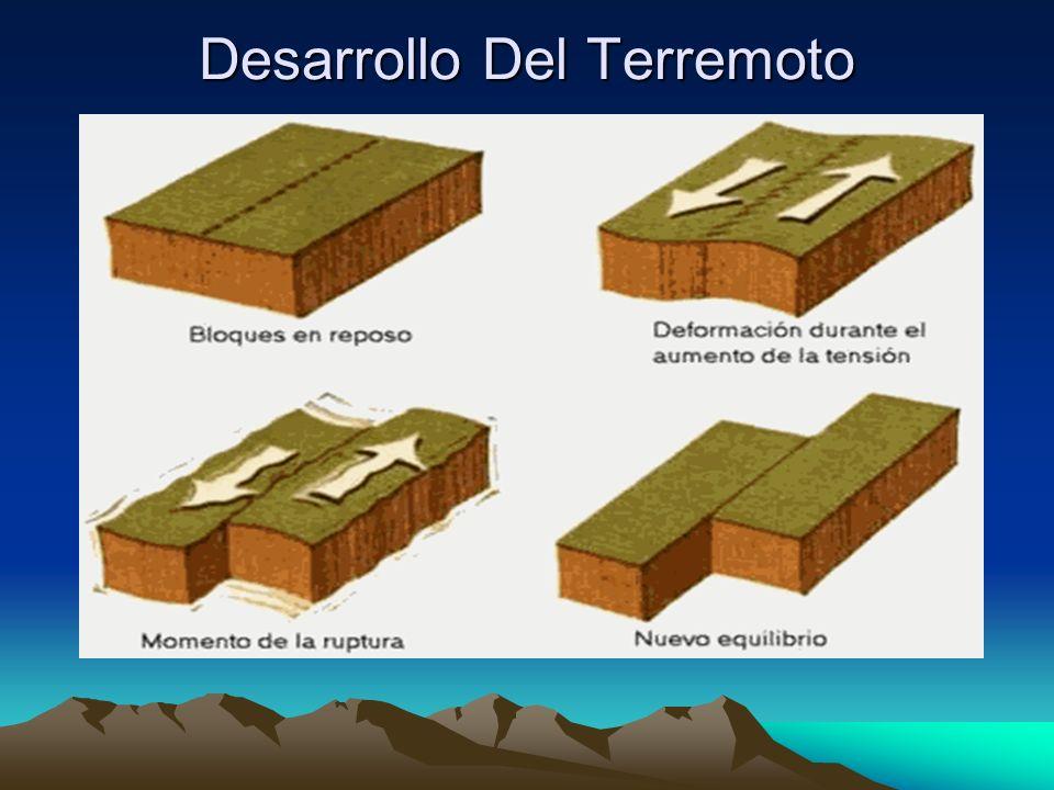 Terremoto Tectónico Maremoto Tectónico Se desarrolla en una falla tectónica.