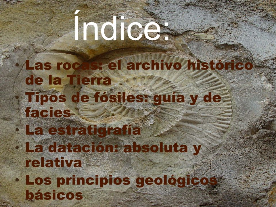 LAS ROCAS SEDIMENTARIAS Conservan numerosas huellas del ambiente sedimentario Generalmente, contienen fósiles La información que contienen queda registrada en los estratos siguiendo un orden cronológico