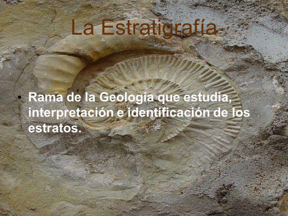 Conceptos clave SECUENCIA ESTRATIGRAFICA: Sucesión de estratos en la corteza terrestre.