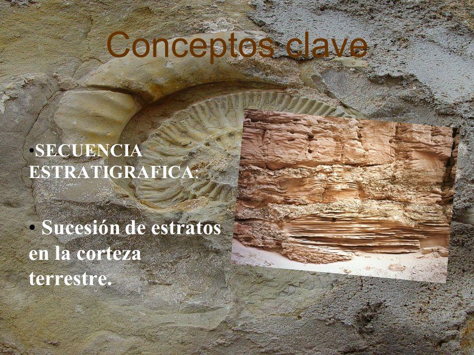Conceptos clave ESTRATO: Cada una de las capas en que se presentan divididos los sedimentos, las rocas sedimentarias y las rocas metamórficas que derivan de ellas.