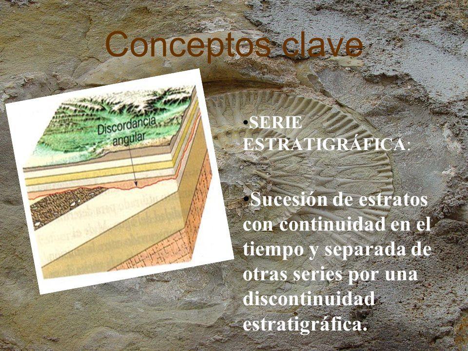 Conceptos clave DISCONTINUIDAD ESTRATIGRAFICA: Separación entre dos series estratigráficas, debida a la existencia de una laguna estratigráfica