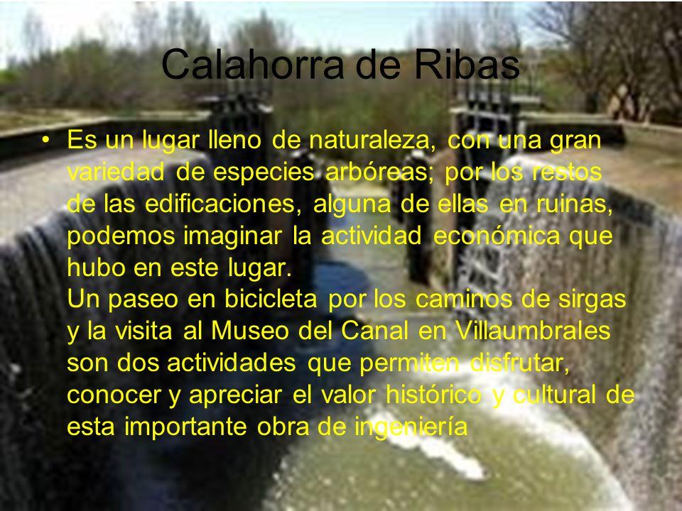 Calahorra de Ribas Es un lugar lleno de naturaleza, con una gran variedad de especies arbóreas; por los restos de las edificaciones, alguna de ellas e
