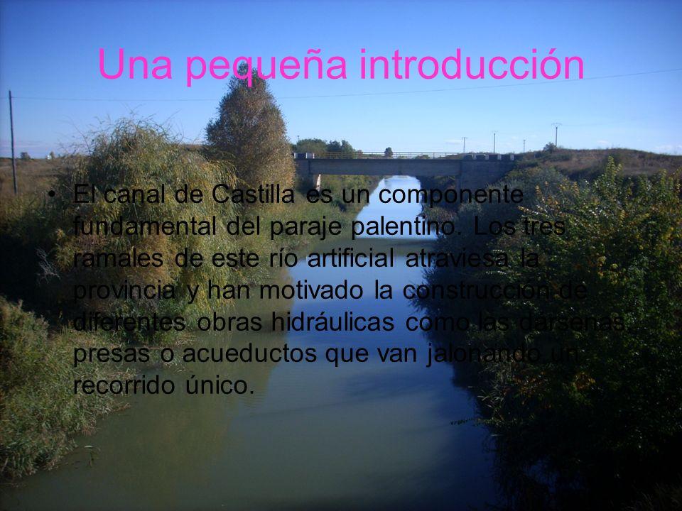 Una pequeña introducción El canal de Castilla es un componente fundamental del paraje palentino. Los tres ramales de este río artificial atraviesa la
