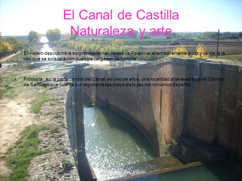 El Canal de Castilla Naturaleza y arte El viajero descubrirá la sorprendente naturaleza de Palencia, alternativamente árida y verde, a la vez que se s