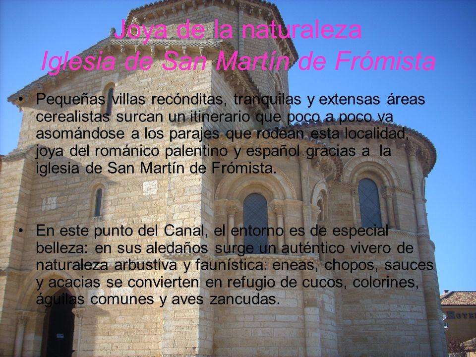 Joya de la naturaleza Iglesia de San Martín de Frómista Pequeñas villas recónditas, tranquilas y extensas áreas cerealistas surcan un itinerario que p