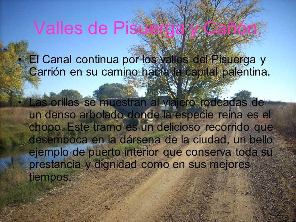 Valles de Pisuerga y Cañón. El Canal continua por los valles del Pisuerga y Carrión en su camino hacía la capital palentina. Las orillas se muestran a