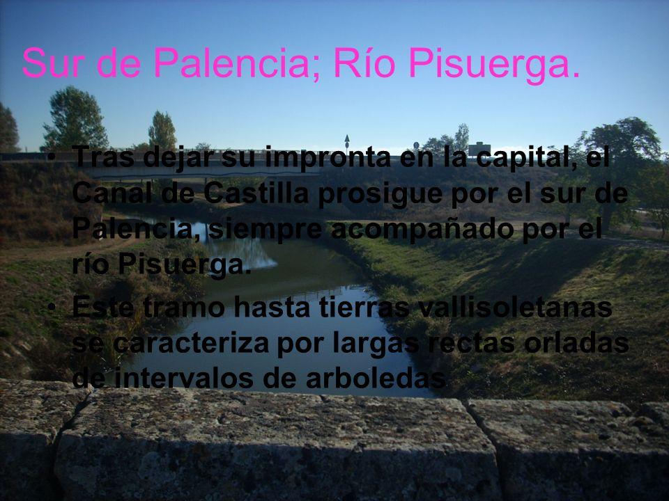 Sur de Palencia; Río Pisuerga. Tras dejar su impronta en la capital, el Canal de Castilla prosigue por el sur de Palencia, siempre acompañado por el r
